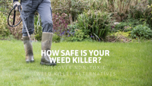 How Safe Is Your Weed Killer? Discover Non-toxic Weed Killer Alternatives